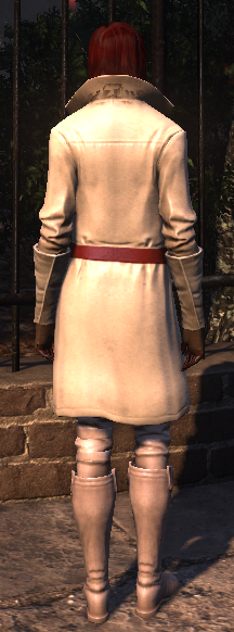 templar_paladin_rear_female.png